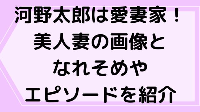 河野太郎は愛妻家!美人妻の画像となれそめやエピソードを紹介