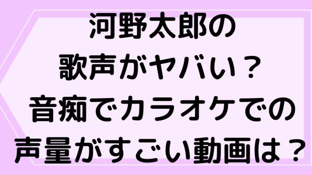 河野太郎の歌声がヤバい?音痴でカラオケでの声量がすごい動画は?